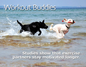 workout_buddies_dogs